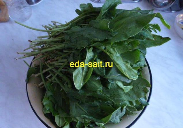 Заготовка зелени и овощей