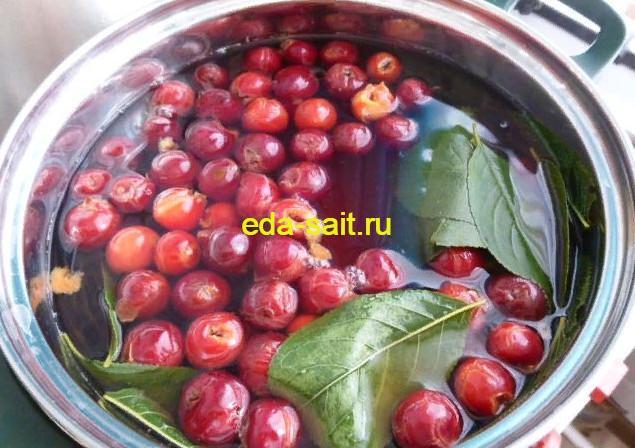Варим вишневый ликер