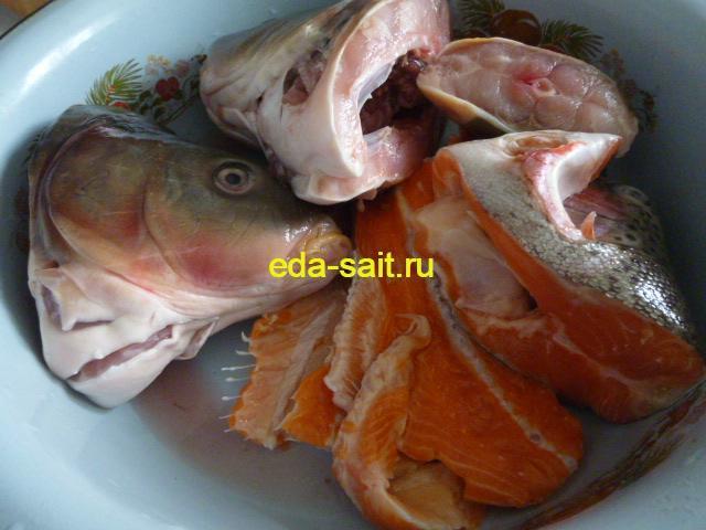 Рыба для приготовления солянки