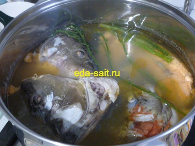 Солянка рыбная бульон