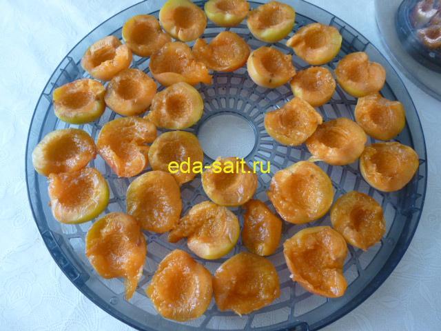 Выложить абрикосы на поддон электросушилки