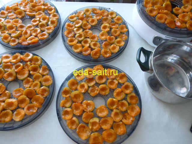 Выложить абрикосы на поддоны