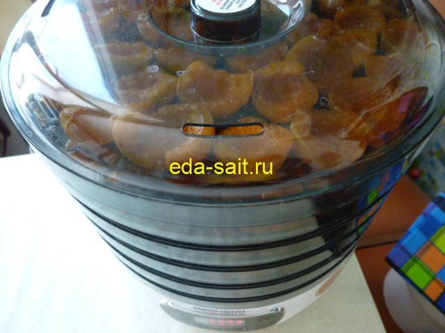 Выставить поддоны с абрикосами в электросушилку