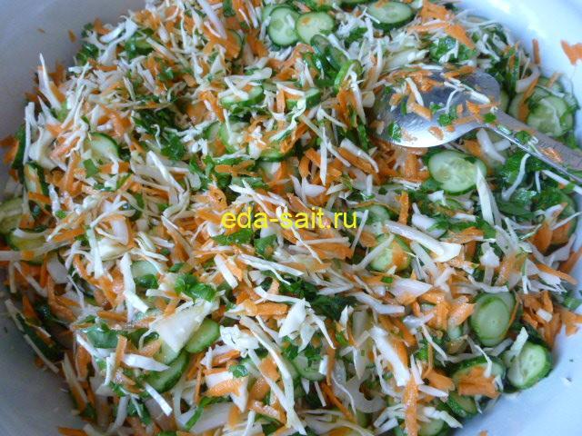 Салат с капустой и огурцами пошаговый рецепт с фото