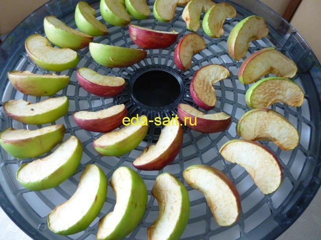 Сушёные яблоки в электросушилке