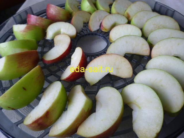 Выложить яблоки на поддоны электросушилки